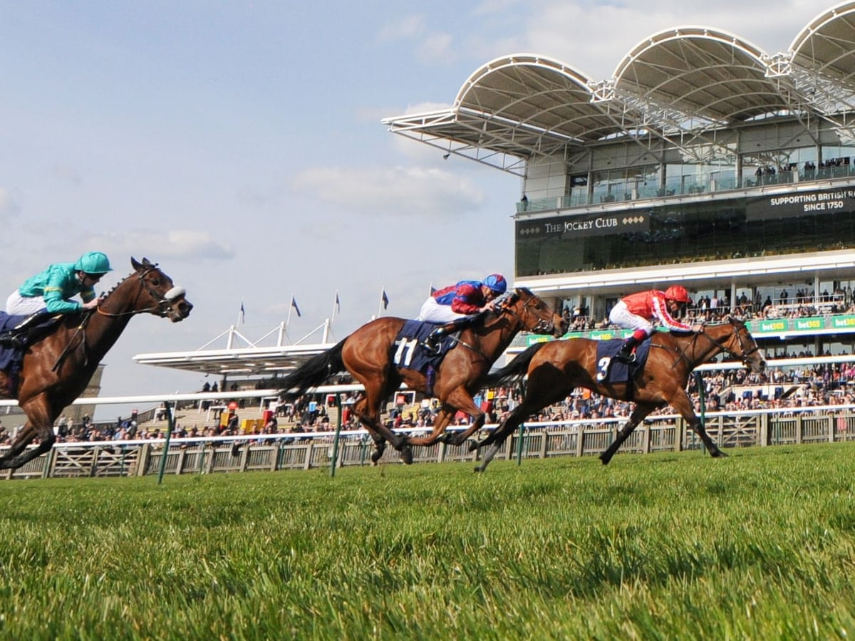 Craven stakes betting on sports reflector bitcoins
