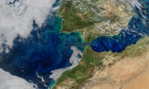Phytoplankton blooms are visible from space in this 2017 satellite image taken of the Gibraltar strait.