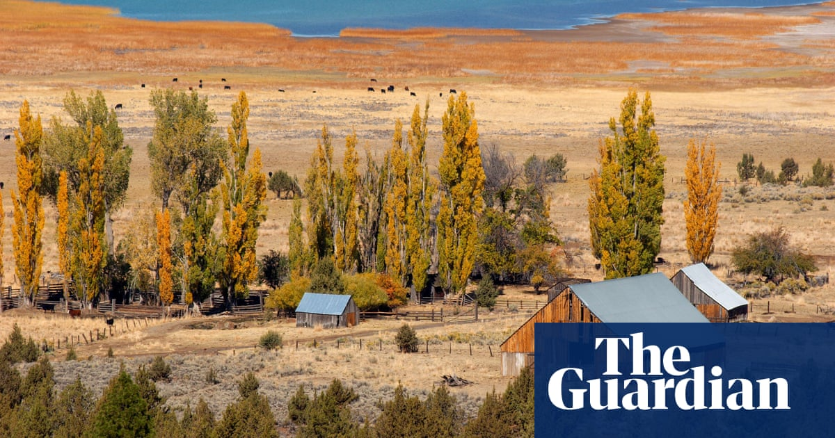 Books To Give You Hope Z For Zachariah By Robert C Obrien  Books  Books To Give You Hope Z For Zachariah By Robert C Obrien  Books  The  Guardian