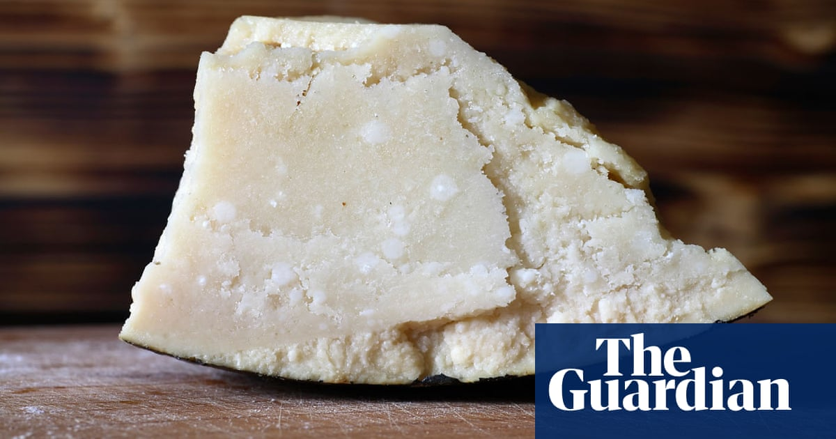 So Your Store Bought Parmesan Cheese Is Made With Wood Pulp Is That So Bad Cheese The Guardian,Artichoke Plant