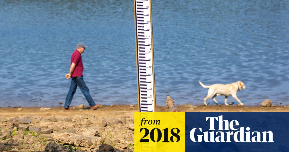 Climate change made UK heatwave 30 times more likely – Met Office