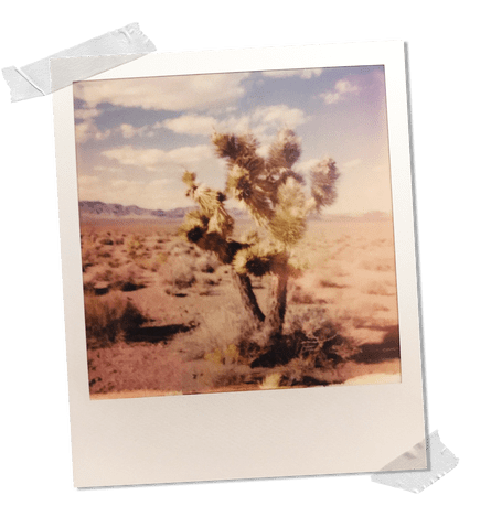 I Stormed Area 51 And It Was Even Weirder Than I Imagined Nevada The Guardian