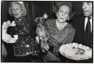 Dachshunds fighting over canapes, Barbetta, New York,1990