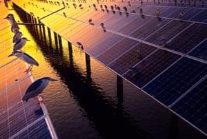 Shortlisted, solar power plant