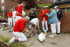 Swan Upping, The Thames, 2015 Unseen City: Photos by Martin Parr is at Guildhall Art Gallery, London from 4 March, Strange and Familiar: Britain as Revealed by International Photographers runs at the Barbican Art Gallery, London from 1 March and The Rhubarb Triangle & Other Stories runs at the Hepworth Wakefielduntil 12 June.All photos ©Martin Parr/Magnum Photos