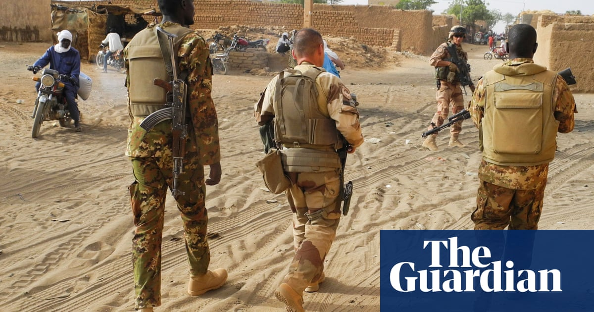 Six French aid workers and two locals killed in ambush in Niger wildlife park
