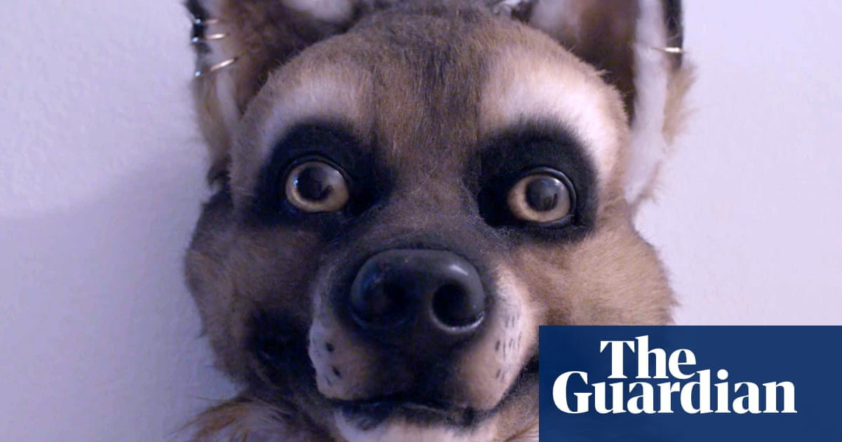Its not about sex, its about identity: why furries are