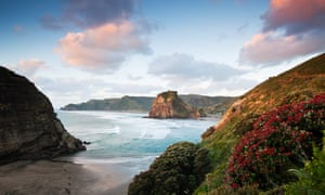 View of Piha beach and Lion Rock, Waitakere Ranges regional park, Auckland, New Zealand