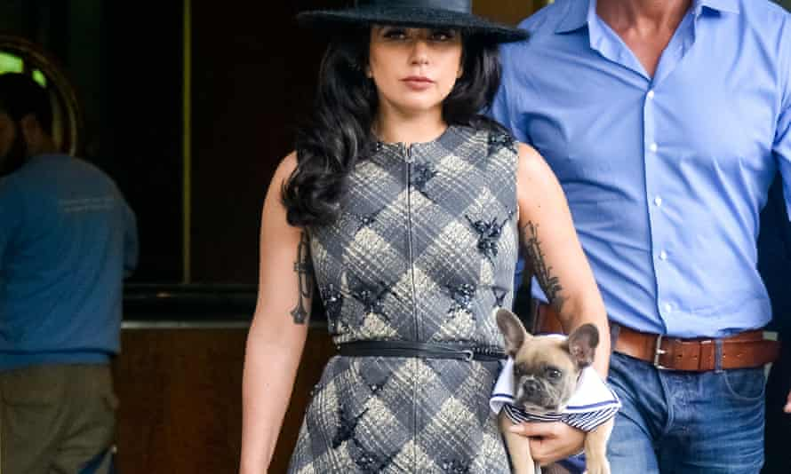 Lady Gaga is seen leaving her New York City apartment with her dog Koji on 12 May 2015.