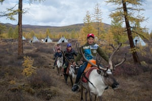 Three young boys ride on the back of reindeers