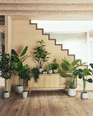 """Greening up your home with faux or real plants is a growing trend,"""""""