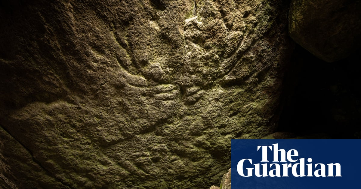Prehistoric carvings of red deer found in Scottish neolithic tomb