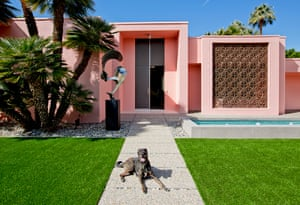 Mingus: Shpall Australian Shepherd/Catahoula Leopard Dog Mix, Rescue Architects: Albert Frey And Robson Chambers, 1964 'Mingus is a unique creature. He is a never-ending source of laughter, love, silly faces, cuddles, support and surprise. Palm Springs represents the epitome of timeless style—a blend of mid century modern architecture, natural beauty, classic elegance, and good times. It is the good life'.