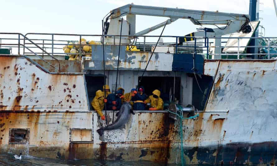 """The Kunlun fishing vessel in the Southern Ocean. The New Zealand navy was involved in a high-seas standoff with vessels that used """"evasive tactics"""" to thwart boarding attempts, officials said. Photo: AFP/New Zealand Defence Force/Amanda Mcerlich"""