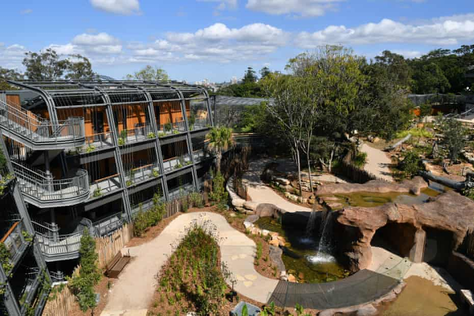 The recently opened wildlife retreat and accommodation at Taronga zoo.