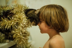 A cat with tinsel round its neck touching foreheads with a small child