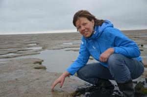 Renate de Backere, a world heritage site guide, surveys Wadden Sea mudflats.