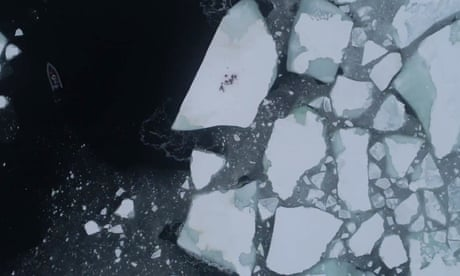 https://www.theguardian.com/environment/2019/jun/07/oceans-demise-the-end-of-the-arctic-as-we-know-it