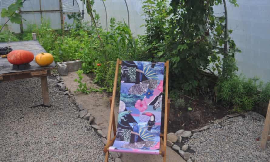 Deckchair in polytunnel