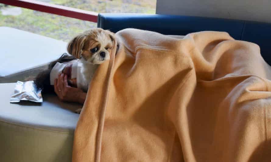 A local resident rests with a pet dog at an evacuation center after an earthquake in Mashiki town.