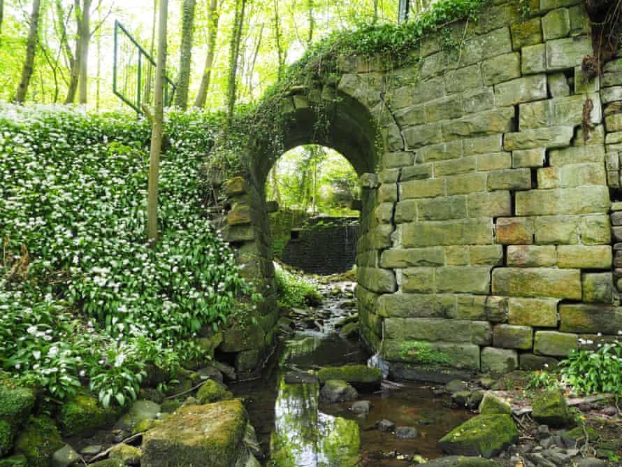 Wild garlic swamps a precariously buckling bridge in Ellar Ghyll