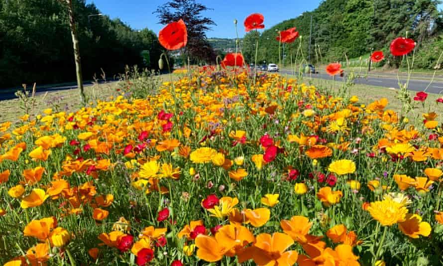Flowers on Hengrove Way, Bristol