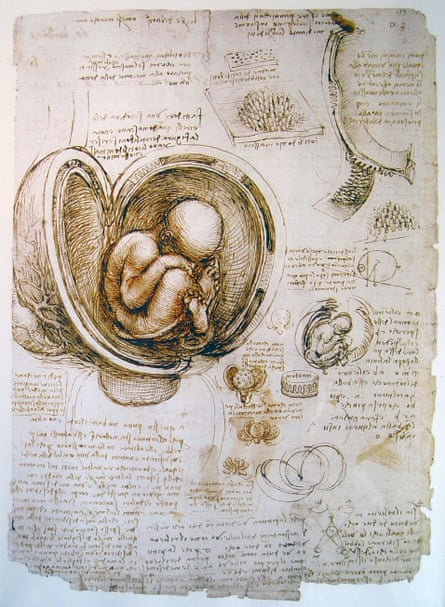 Leonardo da Vinci's anatomical study.