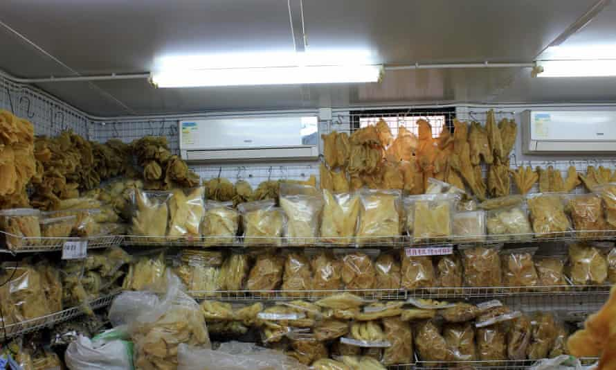 A store room full of dried and bagged fins.
