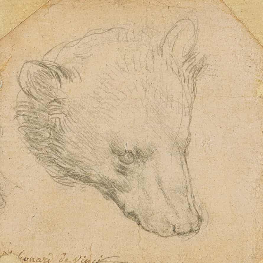 Kepala Beruang oleh Leonardo da Vinci