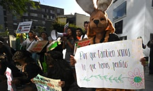 Climate activists and members of the environmentalist groups Citizen Movement Against Climate Change and Fridays for Future protest outside the Australian embassy in Lima