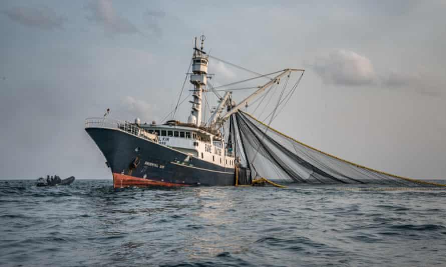 The Oriental Kim, a 75-metre Senegalese-flagged tuna vessel, is seen fishing off Liberia's coast