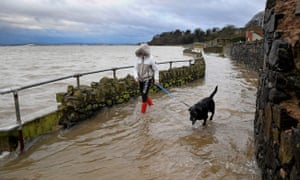 A dogwalker on a flooded coastal pathway around Belfast Lough in County Antrim