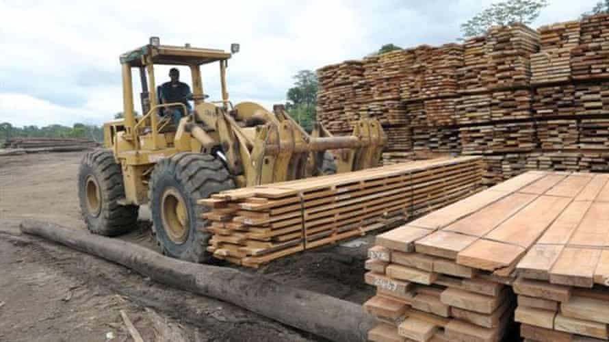The Cloudy Bay timber operation.