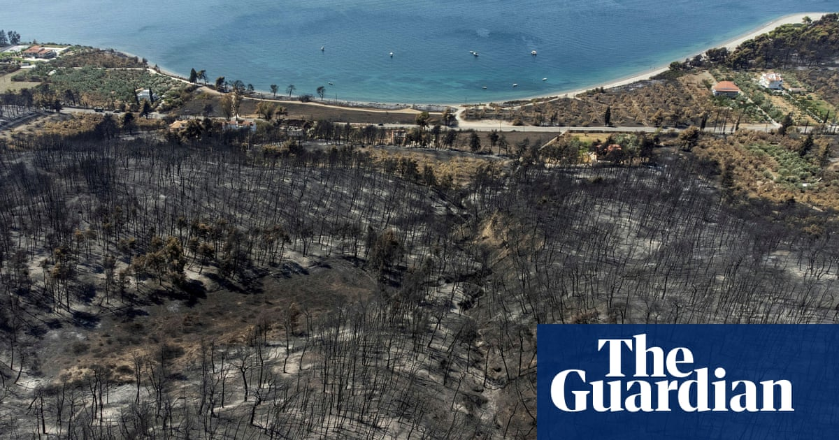 Drone footage shows aftermath of Evia wildfires in Greece – video