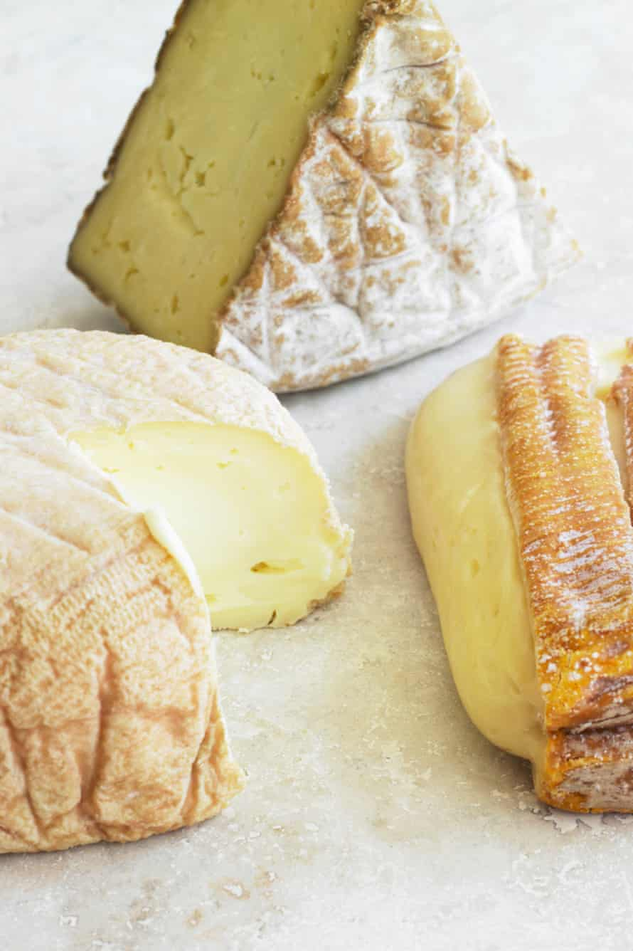 Different kinds of cheese, close-up