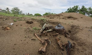A mass grave at the port of Veracruz, 2011.