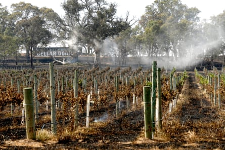 Smoke rises from burnt land at Woodside in the Adelaide Hills in December