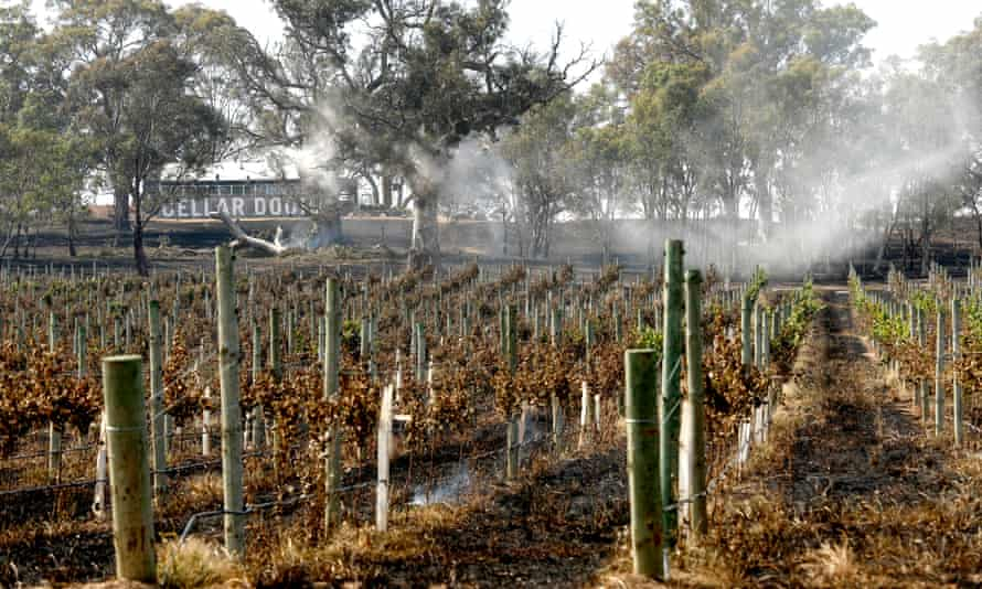Smoke rises from burnt land at Woodside, Australia, 22 December 2019.