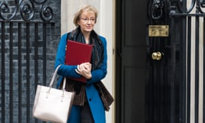 Andrea Leadsom is one of the senior Tory figures touted as a possible replacement for Claire O'Neill as president of November's COP26 climate talks.