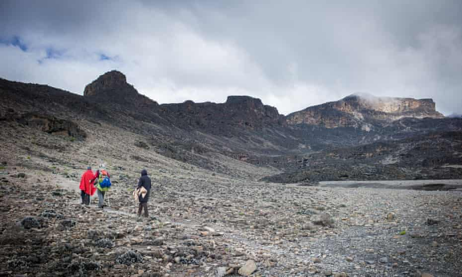 Three walkers on a quiet section of Kilimanjaro, trail on the remote Northern Circuit