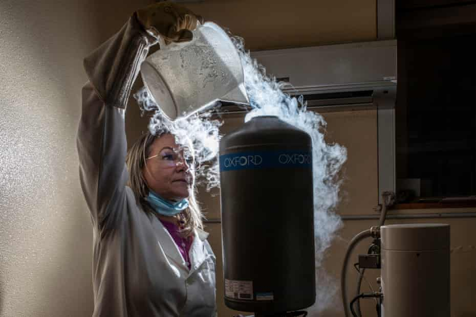 Lucia Miraglia pours liquid nitrogen into a scanning electron microscope in a laboratory at the volcanology institute in Catania.