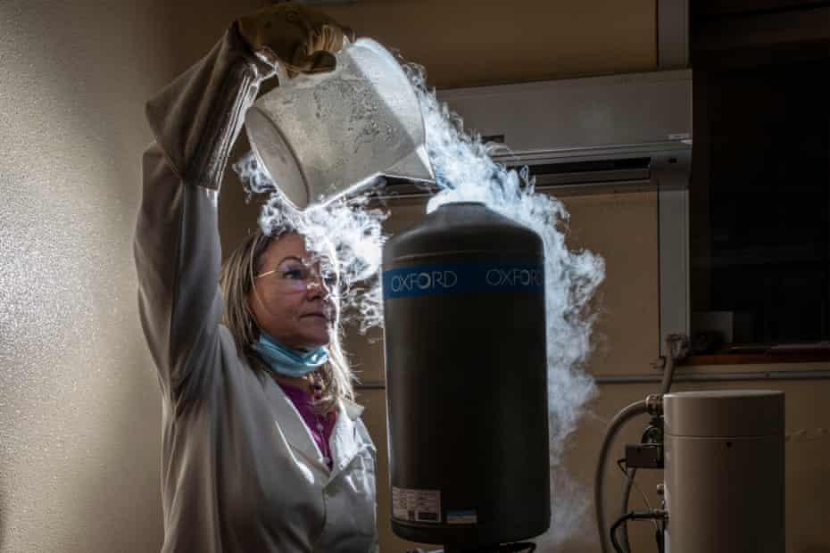 لوسیا میراگلیا در آزمایشگاه موسسه آتشفشانی در کاتانیا نیتروژن مایع را درون میکروسکوپ الکترونی روبشی می ریزد.