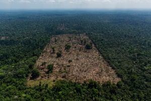 A deforested area inside the Trincheira Bacajá territory