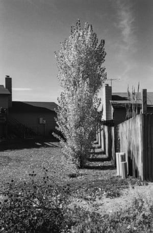 Robert Adams, Arvada, Colorado, from the series Gone? Colorado in the 1980s