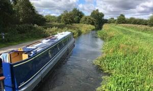 Spot kingfisher on the Pocklington canal.