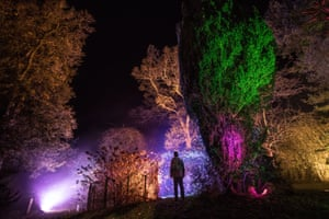 Tetbury, UKA man looks at trees that are illuminated at a preview for this year's Enchanted Christmas at the Forestry Commission's Westonbirt Arboretum. The popular annual festive attraction, which features illuminations and interactive features along the trail