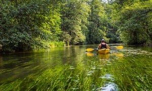 Canoeing in the Masurian Lakes.