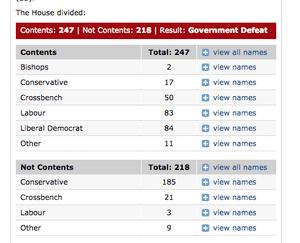 How peers voted on EEA amendment