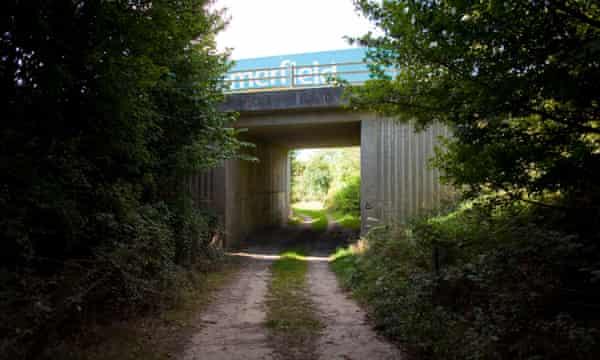 A farm track in Dorset