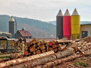 Silos at a logging firm take the form of coloured pencils in Grasellenbach, Germany.